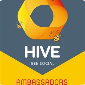 Hive Bee Social